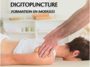 Modules de Formation Digitopuncture