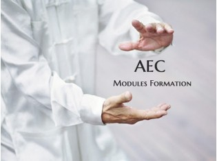 Formation AEC téléchargeable