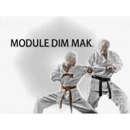 Module Dim Mak-5