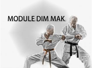 Module Dim Mak-1