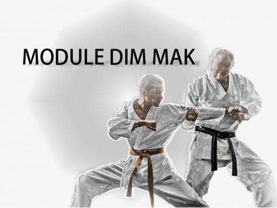 Module Dim Mak-4