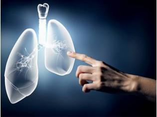 Module Poumons