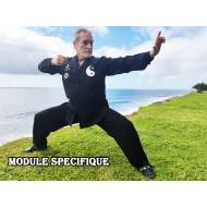 Les bases cachées du Kung Fu