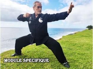 DIM MAK en Wing Chun et Mante Religieuse