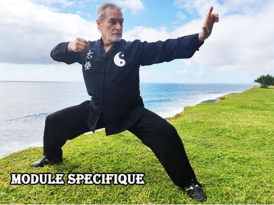 Module Dim Mak et Wing Chun
