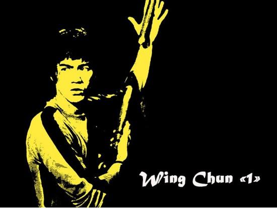 Module Wing Chun 1