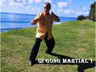 Module Qi Gong Martial 1