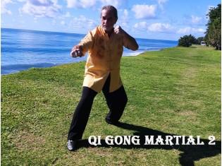 Module Qi Gong Martial 2