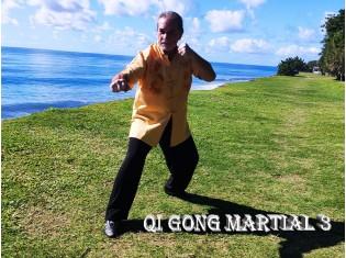 Module Qi Gong Martial 3