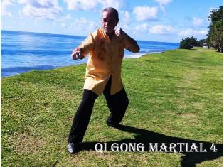 Module Qi Gong Martial 4