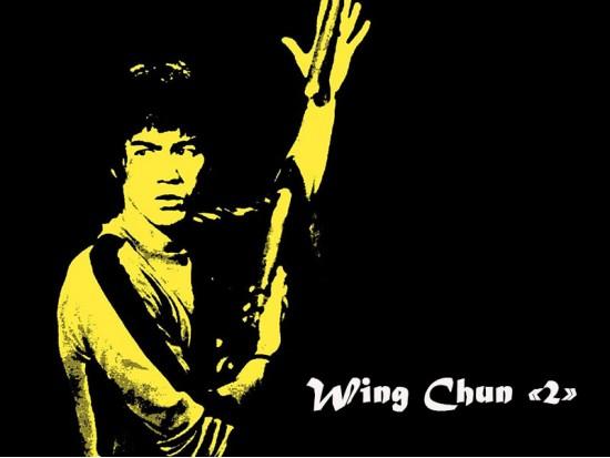 Module Wing Chun 2