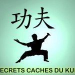 Les secrets du Kung Fu