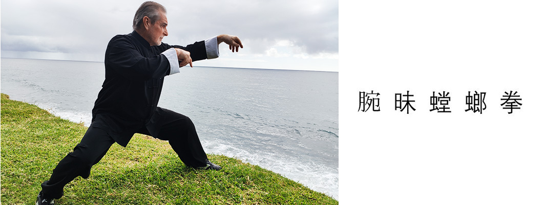 Le Kung Fu
