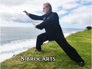 8 Brocarts