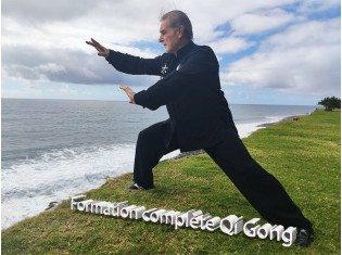 Formation Qi Gong complète