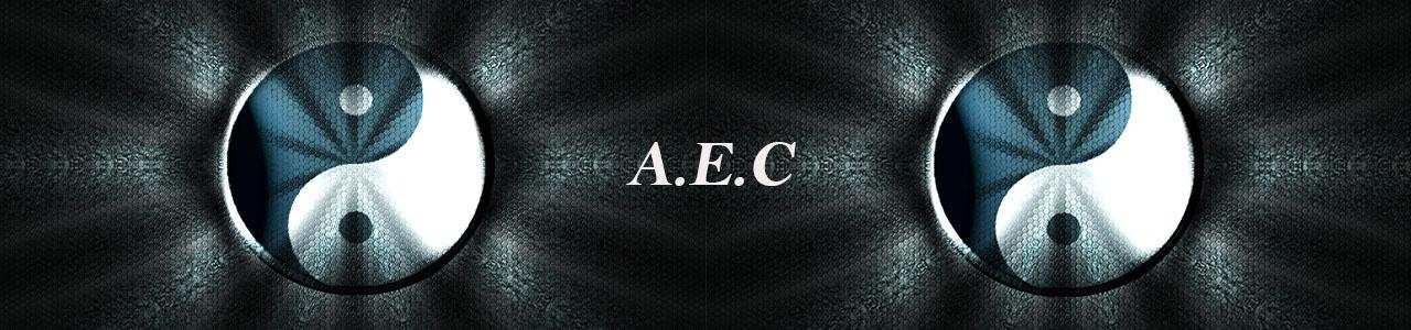 Formation AEC en Modules